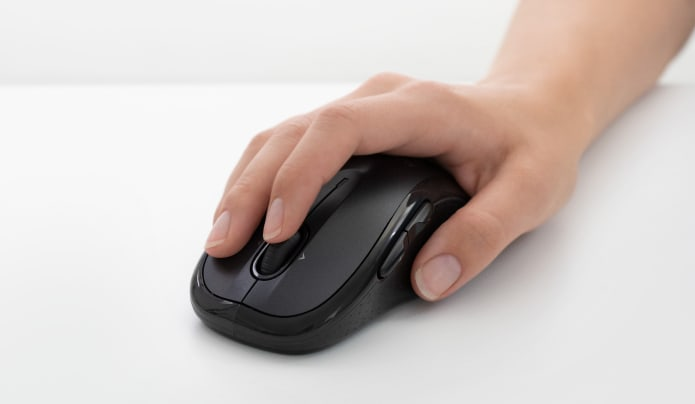Mouse in Hand